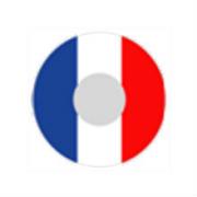 Карнавальные линзы P-Con France  14.00mm