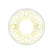 Золотые линзы P-Con Adela 1 tone  14.50mm